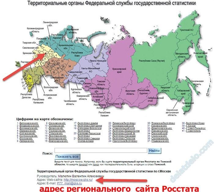 Определение адреса регионального отделения статистики